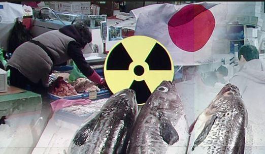 일본 수산물