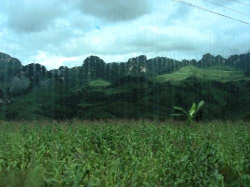 *사진 [우기 차창 밖 풍경] 라오스 루앙파방(Luangprabang)에서 왕위양(Vangvieng)으로 가는 우기의 버스 창밖 풍경