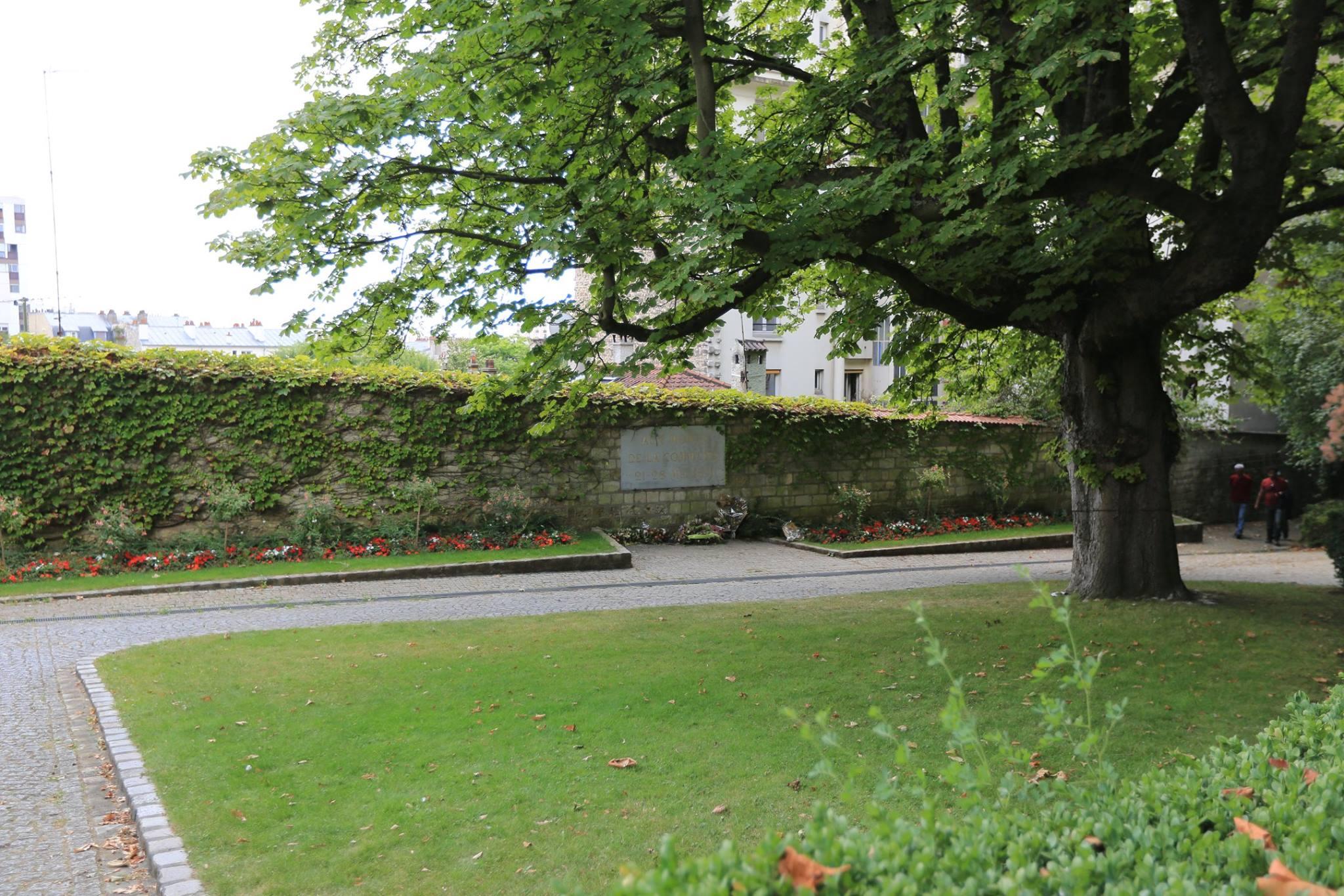 묘지의 나무